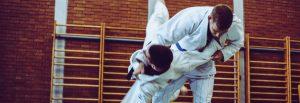 martial arts 300x103 - Ivybridge Physio and Rehab Treatment